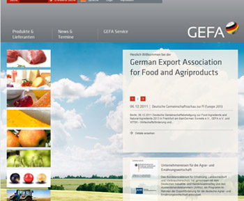 GEFA 2012 Screenshot Homepage